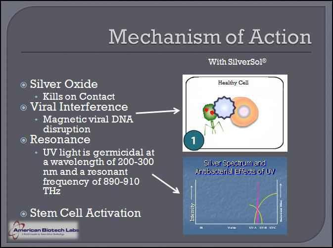 http://www.researchsilver.com/assets/files/img/nano-silver-mechanism.jpg